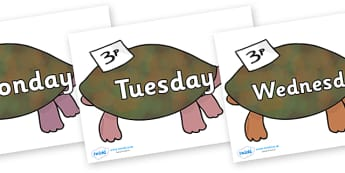 Days of the Week on Turtle to Support Teaching on The Great Pet Sale - Days of the Week, Weeks poster, week, display, poster, frieze, Days, Day, Monday, Tuesday, Wednesday, Thursday, Friday, Saturday, Sunday