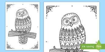 Morepork Owl Mindfulness Colouring Page - New Zealand Mindfulness, morepork owl, owl, colouring