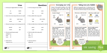 How to Look After a Rabbit Differentiated Reading Comprehension Activity English/Afrikaans - Pets, fur, tame, food, tail, ears, nature, EAL