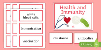 Health and Immunity Word Wall