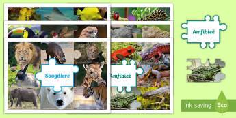 Diere Groepe - animal groups, animal Categories, deire groepe, diere, animal types, puzzle, legkaart,