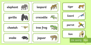 Jungle Animal Themed Word Cards - walking through the jungle, animals, story, book, word card, flashcards, cards, jungle, animal, lion, tiger, elephant, snake monkey, crocodile