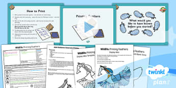 Art: Wildlife: Printing Feathers UKS2 Lesson Pack 3