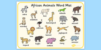 Afrikaans Suid-Afrikaanse Diere Woordmat - Suid-Afrika, diere, wilde diere, woordeskat, woordmat