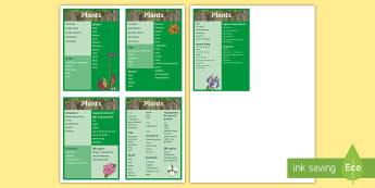Year 3 Plants Scientific Vocabulary Flashcards - Year 3 Plants Scientific Vocabulary Flashcards - vocabulary, poster, plnts, plants, flowers, life pr