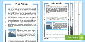 KS1 Polar Animals Differentiated Reading Comprehension Activity - Winter 2016/17, weather, cold, freezing, fur, insulation, polar bear, penguin, blizzard, Arctic, Ant