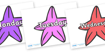 Days of the Week on Starfish (Multicolour) to Support Teaching on The Rainbow Fish - Days of the Week, Weeks poster, week, display, poster, frieze, Days, Day, Monday, Tuesday, Wednesday, Thursday, Friday, Saturday, Sunday