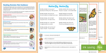 Year 4 Reading Revision Activity Mat Pack (1) - Comprehension, inference, retrieval, fiction, mini-beasts, insects, butterflies, butterfly, migratio