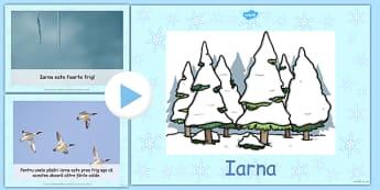 Iarna - Prezentare PowerPoint - iarna, prezentare, power point, informații, științe, întâlnirea de dimineață, materiale, materiale didactice, română, romana, material, material didactic