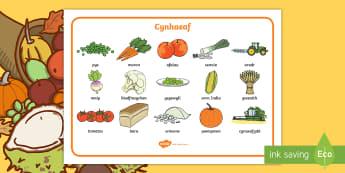 Mat Geiriau y Cynhaeaf - harvest, word, mat, cynhaeaf, mat, geiriau, allweddol, ysgrifennu,Welsh