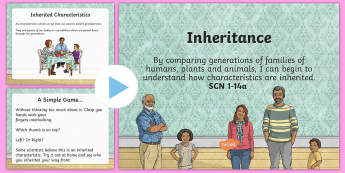 Inheritance PowerPoint - CfE Science, science week, Edinburgh Science Festival, Glasgow Science Festival, Scottish Science Fe