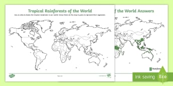 Tropical Rainforests Around the World Activity Sheet - World Around Us KS2 - Northern Ireland, worksheet, rainforest, tropical