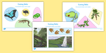 Australian Tropical Rainforest Habitat Cutting Skills Worksheet - australia, Science, Year 1, Habitats, Australian Curriculum, Tropical, Rainforest, Living, Living Adventure, Environment, Living Things, Animals, Plants, Cutting Skills, Fine Motor