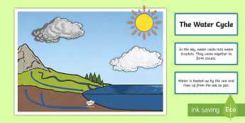 Water Cycle Display - water, water cycle, display, science