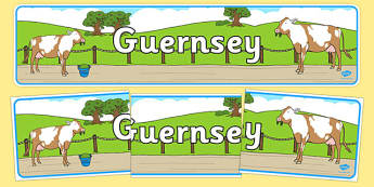 Guernsey Display Banner - geography, united kingdom, UK, island, map, world, country
