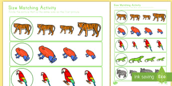 Jungle Themed Size Matching Worksheet / Activity Sheet - math, size jungle, rainforest, worksheet / activity sheet, worksheet, comparing, measurement