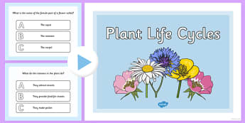Plant Life Cycles PowerPoint Quiz - plants, life cycle, quiz