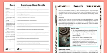 Year 3 Fossils Differentiated Reading Comprehension Activity - sedimentary, palaeontology, dinosaurs, tyrannosaurus rex