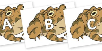 A-Z Alphabet on Toad - A-Z, A4, display, Alphabet frieze, Display letters, Letter posters, A-Z letters, Alphabet flashcards