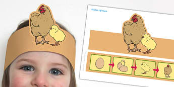Hen Life Cycle Headband - hen, life cycle, headband, role-play