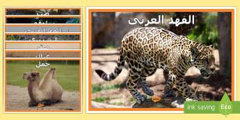 صورحيوانات عربية للعرض - علوم، حيوانات، عربي، كائنات حية، الفهد العربي، حيوانا