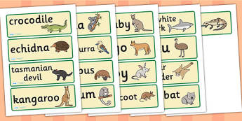 Australian Animal Word Cards - Australian animals, word card, flashcards, kangaroo, wallaby, kookaburra, wombat, crocodile, koala, possum