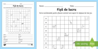 Localizarea într o reprezentare grafică Fișă de lucru - coordonate, retea, rețea, organizarea datelor, tabel, coloane, linii, rând, rand, romanian, materi