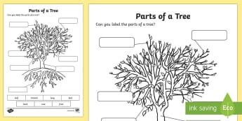 The Parts of a Tree Activity Sheet - national tree week, trees, labelling, parts of a tree, bark, leaf, branches, roots, fruit, growing,