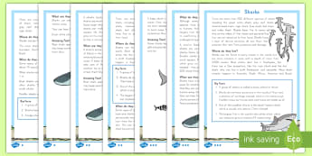 Sharks Differentiated Reading Comprehension Activity - Sharks, Reading comprehension, nonfiction, animals, under the sea, Informational text