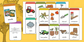 Autumn Flashcards - visual aids, seasons, weather, writing aid