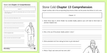 'Stone Cold' Chapter 13 Comprehension Activity Sheet - Swindells, Comprehension, Shelter, Link, Assess