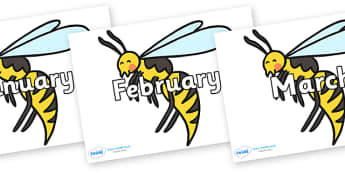 Months of the Year on Wasps - Months of the Year, Months poster, Months display, display, poster, frieze, Months, month, January, February, March, April, May, June, July, August, September