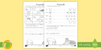 Ficha de actividad: Los animales en plural - Inglés - animals, lengua extranjera, english, , plural, ,Spanish-translation - animals, lengua extranjera, english, , plural, ,Spanish-translation