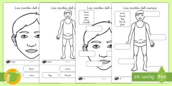 Fichas de actividad: Las partes del cuerpo - Inglés - body, english, lengua extranjera, parts, yo mismo, Spanish-translation