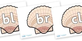 Initial Letter Blends on Seashells - Initial Letters, initial letter, letter blend, letter blends, consonant, consonants, digraph, trigraph, literacy, alphabet, letters, foundation stage literacy