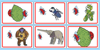 Short Story Sequencing to Support Teaching on The Bad Tempered Ladybird - storybooks