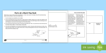 Parts of a Shark Activity Sheet -  Ampullae of Lorenzini, caudal fin, dorsal fin, shark skin, shark project, shark research