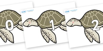 Numbers 0-31 on Turtles - 0-31, foundation stage numeracy, Number recognition, Number flashcards, counting, number frieze, Display numbers, number posters