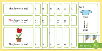 Plants and Flowers Simple Sentence Cards - Plants and Flowers, Sentences, sentence cards, reading, phonics, eyfs, literacy