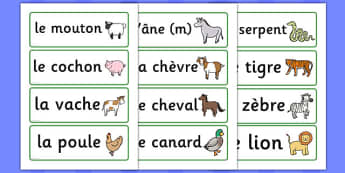 Animal Word Cards (French) - animals, French, francais, MFL, word card, flashcards, cat, dog, horse, elephant, lion