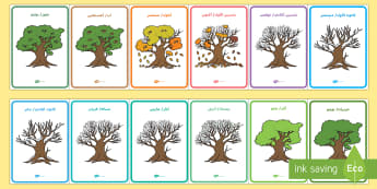 ملصقات عرض شهور السنة مع شجر البلوط - Months of the Year on Oak Trees - month, months, year, seasons, tree, british wildlife,Arabic