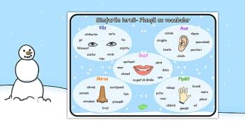 Simțurile iernii - Planșă cu vocabular - iarna, simțuri, planșă, vocabular, cuvinte, corpul meu, materiale, materiale didactice, română, romana, material, material didactic