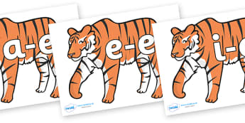 Split Digraphs on Tigers - Modifying E, letters, modify, Phase 5, Phase five, alternative spellings for phonemes, DfES letters and Sounds