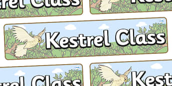 Kestrel Themed Classroom Display Banner - Themed banner, banner, display banner, Classroom labels, Area labels, Poster, Display, Areas