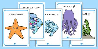 Peștele curcubeu - Cartonașe - Peștele curcubeu, Cartonașe - pești, animale marine, viata marina, materiale, materiale didactice, română, romana, material, material didactic