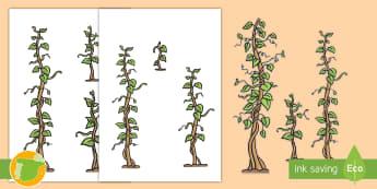 Ordenar tamaños: Las habichuelas - habichuela, longitud, medir, ordenar, ordenación, orden, longitudes, largo, corto, mates, matemáti