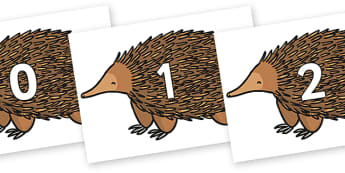 Numbers 0-31 on Echidna - 0-31, foundation stage numeracy, Number recognition, Number flashcards, counting, number frieze, Display numbers, number posters