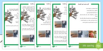 نشاط متمايز للفهم القرائي في موضوع الشتاء - قراءة، القراءة، القراءة والفهم، الفهم القرائي، علوم،