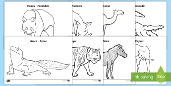 Zoo Animals Colouring Pages English/German - EAL, German, EYFS, Early Years, At the Zoo, Animals, Pencil Control, Expressive Arts and Design.,Ger