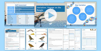 Science Week: Voyage on the Beagle Lesson 1 - Variation  - evolution, adaptation, speciation, galapagos, science week, exploration, discovery